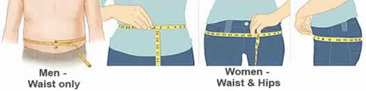 body fat measurement