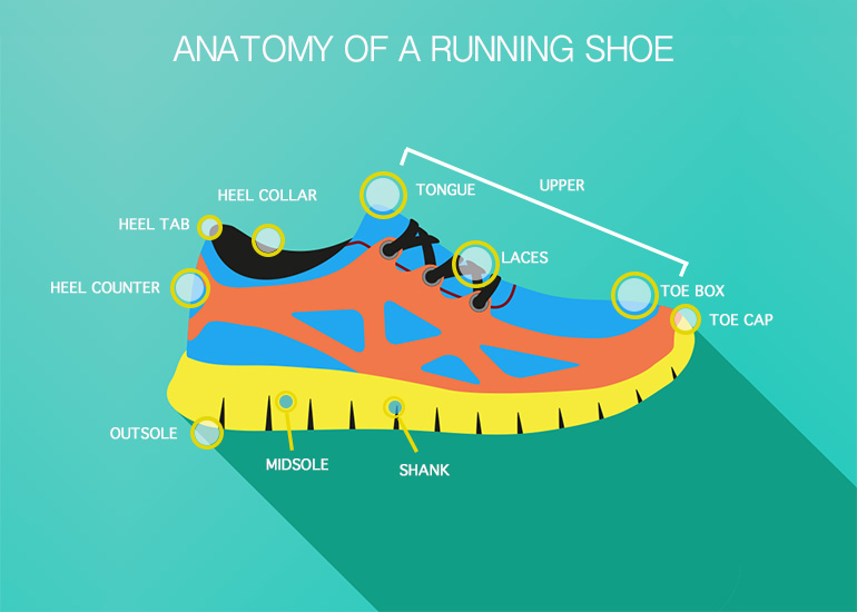 Anatomy of a running shoe | Choose the right shoe for you