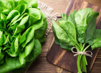 The Salad Greens Guide: How to Use, Recipes & Benefits