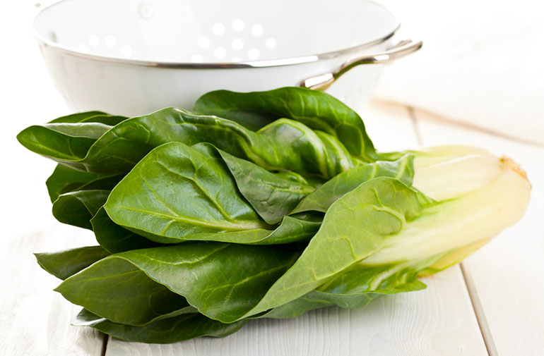 Total Guide to Salad Greens