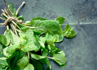 Mint: How to Use, Cook & Store